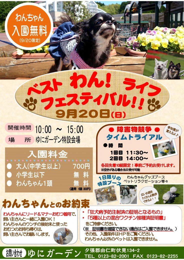 ベストわんライフフェスティバル開催♪(9/20)
