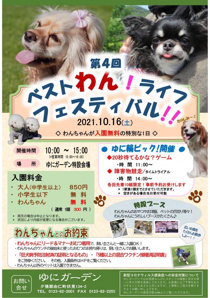 ベストわん!ライフフェスティバル!!延期日決定(10/16)